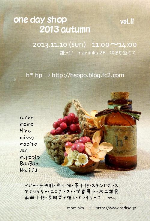 20131110web